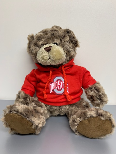 Picture of Charlie Bear